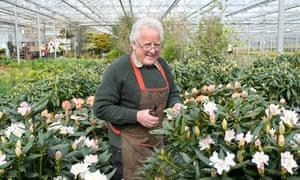 Ricky Dorlay, master plantsman
