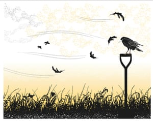 An illustration from The Worm and the Bird.