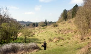 Warden Alan Sumnall at Daneway Banks reserve in Gloucestershire where Phillip Cullen was found to have unlawfully collected the rare large blue.