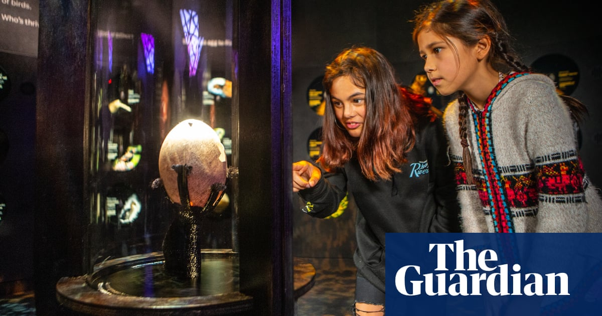 Inside the nature zone: New Zealand's major museum investment is an urgent call to action