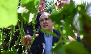 The French minister of agriculture, Didier Guillaume, visits a vineyard in La Roche-de-Glun that was badly affected by hailstorms that struck the Drôme department