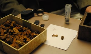 Bits of wood remains from the coffin that once held Catherine Burns. On the right are bits of her bones, which will be returned to County Tyrone, Northern Ireland.