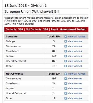 How peers voted on Hailsham amendment
