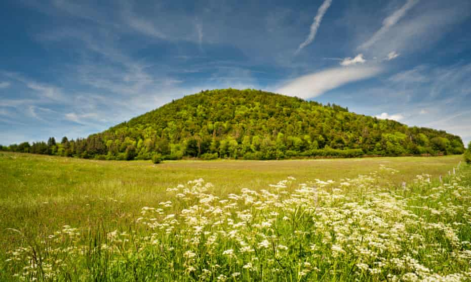 Wildflower meadow in front of Puy de Montchal, a volcanic cone, Puy-de-Dome.