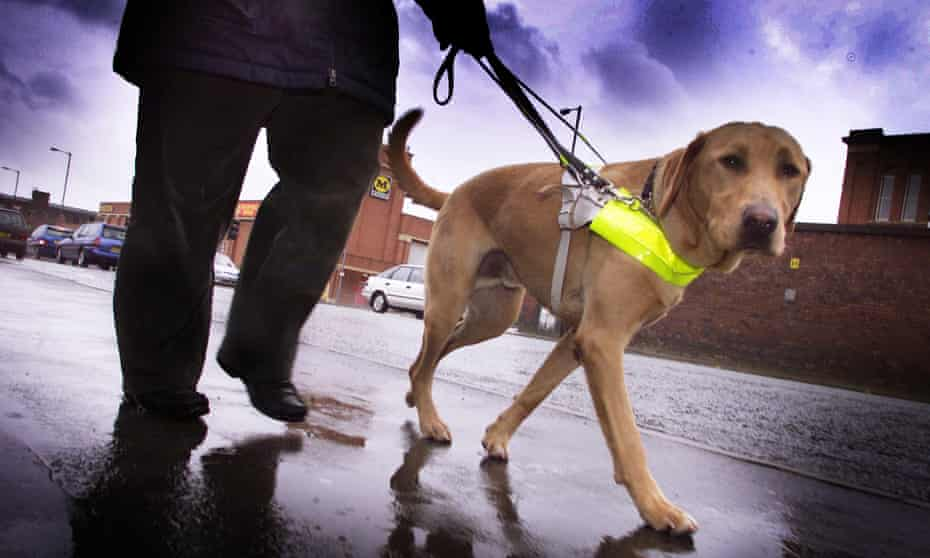Echolocation is typically used alongside a cane or guide dog and gives an impression of the person's broader surroundings.