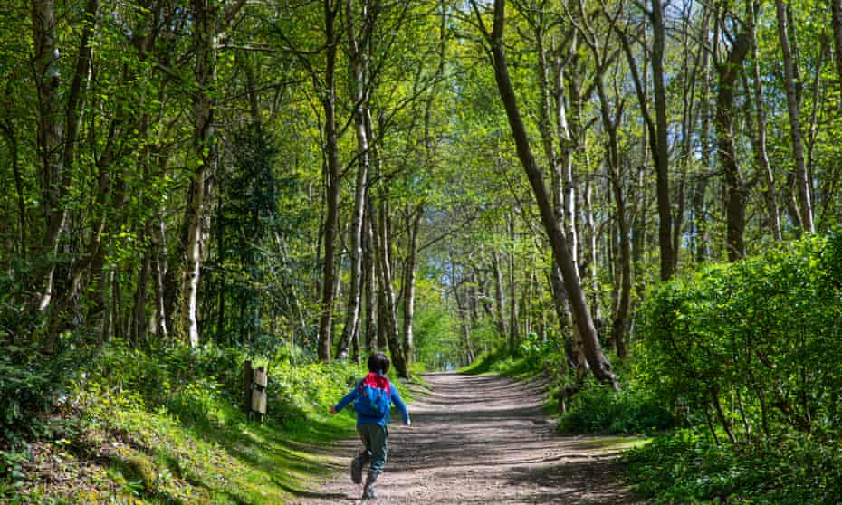 A boy running on a path through the wood in Bestwood Country Park, Nottingham that the Wild Things Forest School uses as its classroom