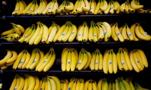 Lidl is the latest to switch to sustainable bananas  Will it