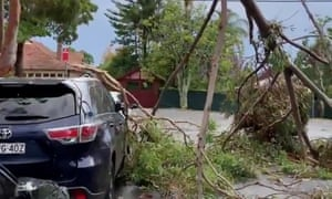 Sydney storm: a thunderstorm swept through Gordon on Tuesday afternoon as wild weather brought down hundreds of trees and powerline