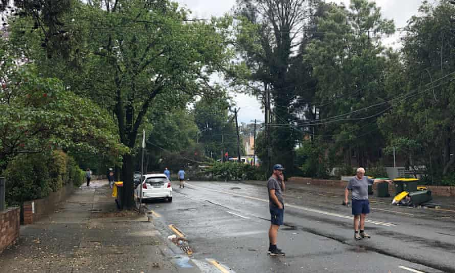 Men direct traffic after a tree fell on Penshurst Street, in the Sydney suburb of Willoughby, taking power lines down.