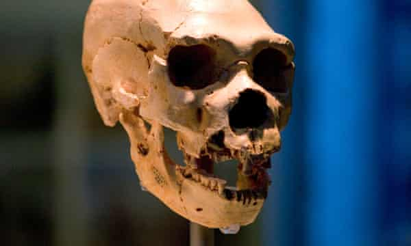 Scientists find evidence of 'ghost population' of ancient humans | Science | The Guardian
