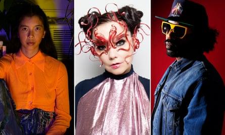 Bandcamp favourites … Ana Roxanne, Björk and Dam Funk.