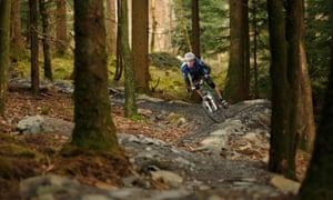 Mountain biker riding through woodland at the Coed-y-Brenin Cycle Centre in Mid Wales