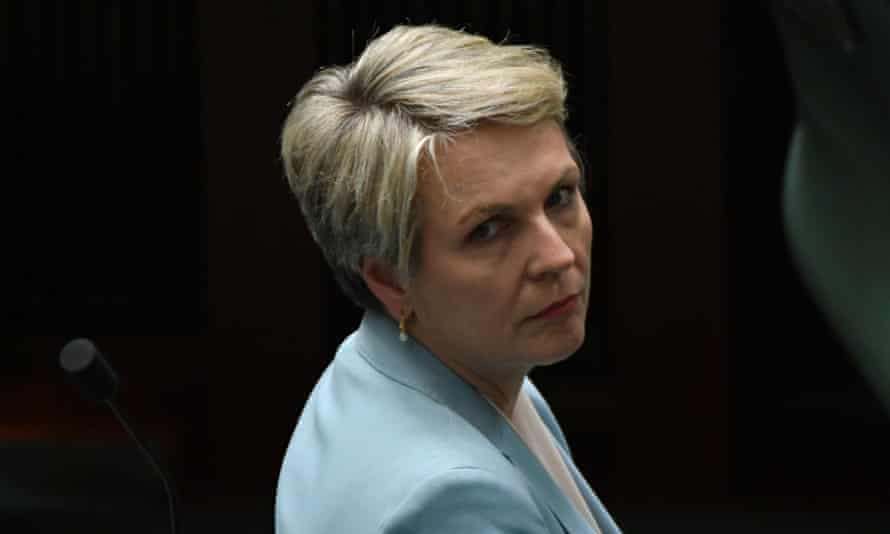 Labor's education spokesperson Tanya Plibersek says Australian universities should be able to show students freedom of thought.