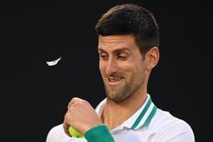 Melbourne, Australia. A butterfly interrupts Novak Djokovic during his semi-final match in the Australian Open