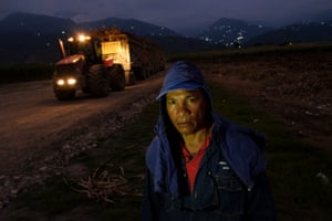 A sugarcane worker from the Cauca Valley stands in front of a tractor train loaded with harvested cane