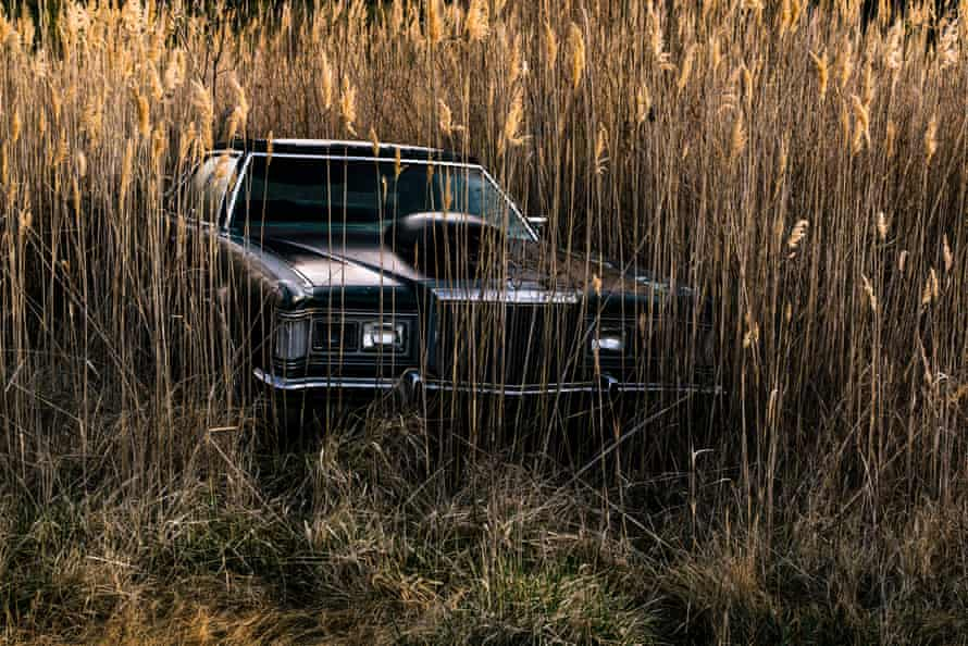 An abandoned near Deal Island is enveloped by phragmites, grass found in wetlands across the world.