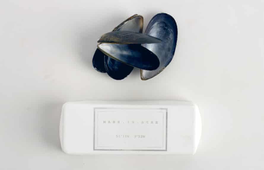 Mussel shell plaster.
