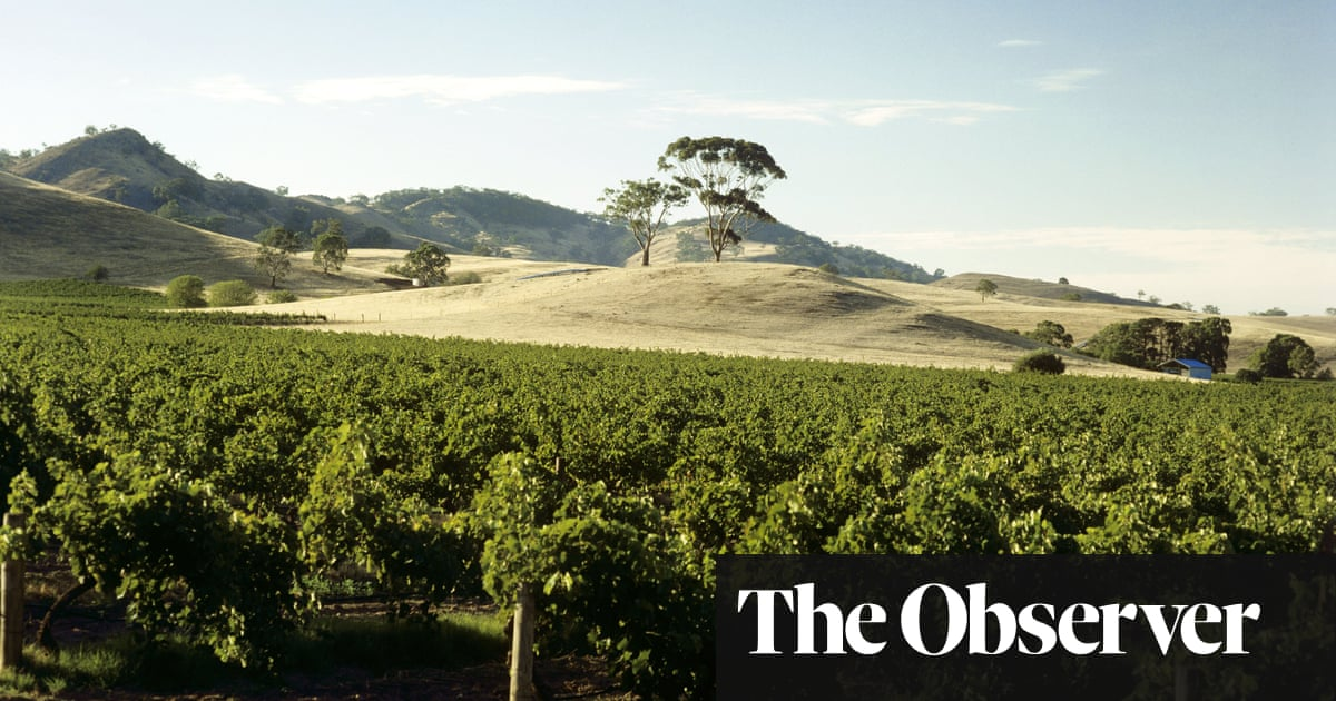 Being a member of a wine club reaps rewards