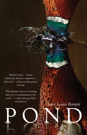 Book cover for Australian release of Pond by Claire-Louise Bennett