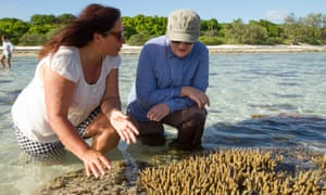 Selina Ward, a marine biologist from the University of Queensland, and Kelly O'Shanassy, chief executive of the Australian Conservation Foundation