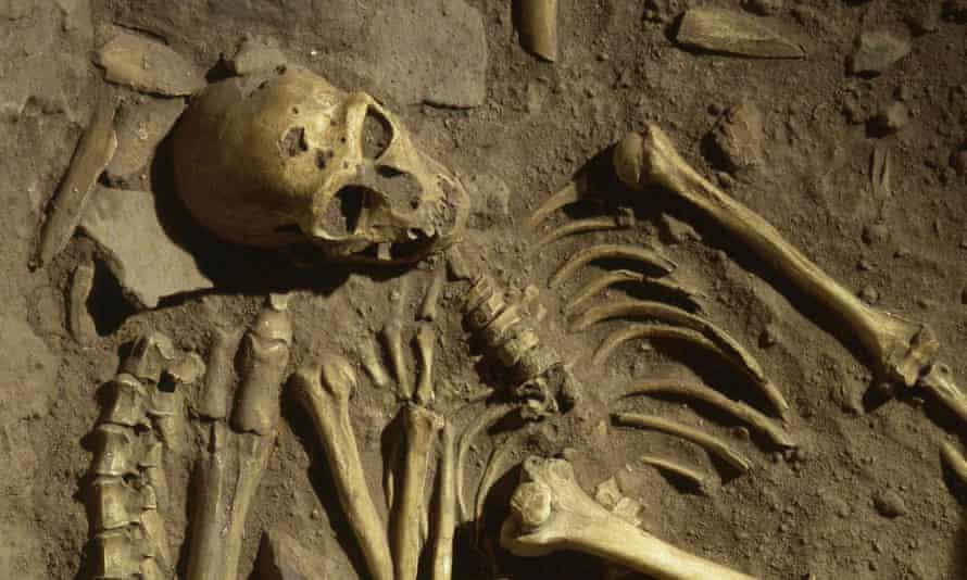 A Neanderthal skeleton partially unburied