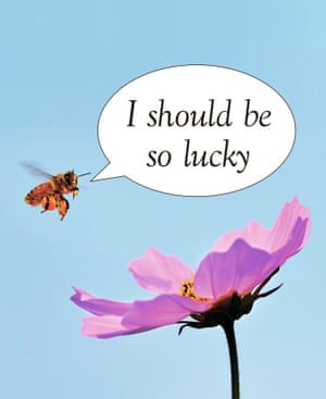 I Should Be So Lucky written in speech bubble on blue background, next to bee and purple flower, an exclusive artwork on the climate crisis, created by Jeremy Deller and Fraser Muggeridge for Weekend magazine