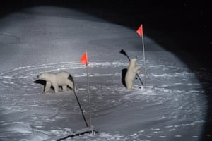 First prize, environment singles: Polar Bear and her Cub – Esther Horvath, Hungary. A polar bear and her cub come close to equipment placed by scientists from Polarstern, a ship that is part of a scientific expedition investigating the consequences of Arctic climate change, in the central Arctic Ocean, on 10 October 2019.