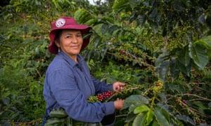 Female coffee farmer in Colombia
