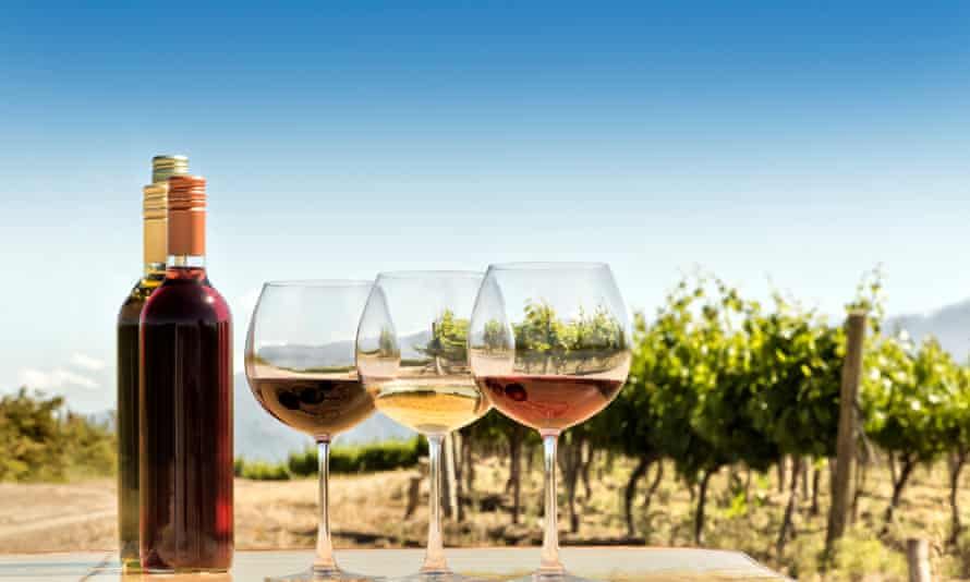 A red, white and rose wine flight at an Australian vineyard.