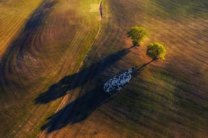 Shadow Game, Tuscany, Italy