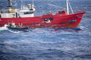 Greenpeace activists confront a fishing vessel as it hauls a shark 200 miles off The Azores