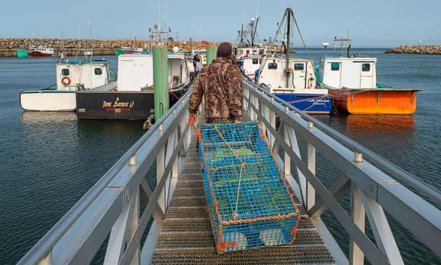 Members of the Sipekne'katik First Nation load lobster traps in Saulnierville, Nova Scotia