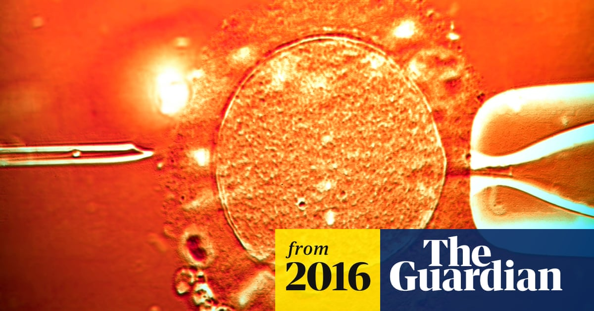 Increase in serious IVF complications raises concerns over