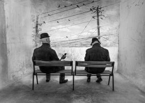 A m'asseoir sur un banc cinq minutes avec toi... I Like Birds par Eels