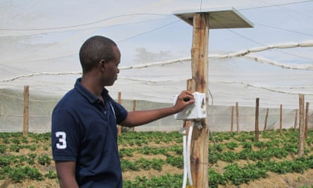 Illuminum Greenhouses run on solar power and the irrigation system can be turned off and on by text message.