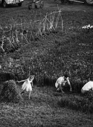 Afrikaners at harvest by David Goldblatt.