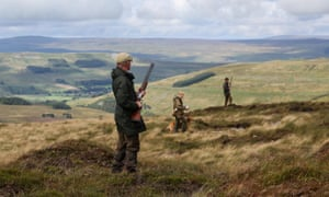 Men ready their shotguns during a grouse shoot in high on the Yorkshire moors in Swinithwaite, North Yorkshire.<br>GM6DY8 Men ready their shotguns during a grouse shoot in high on the Yorkshire moors in Swinithwaite, North Yorkshire.