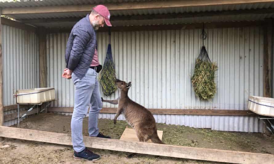 Dr Alan McElligott with a kangaroo at the Australian Reptile Park.