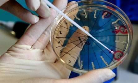 A scientist holds a petri dish