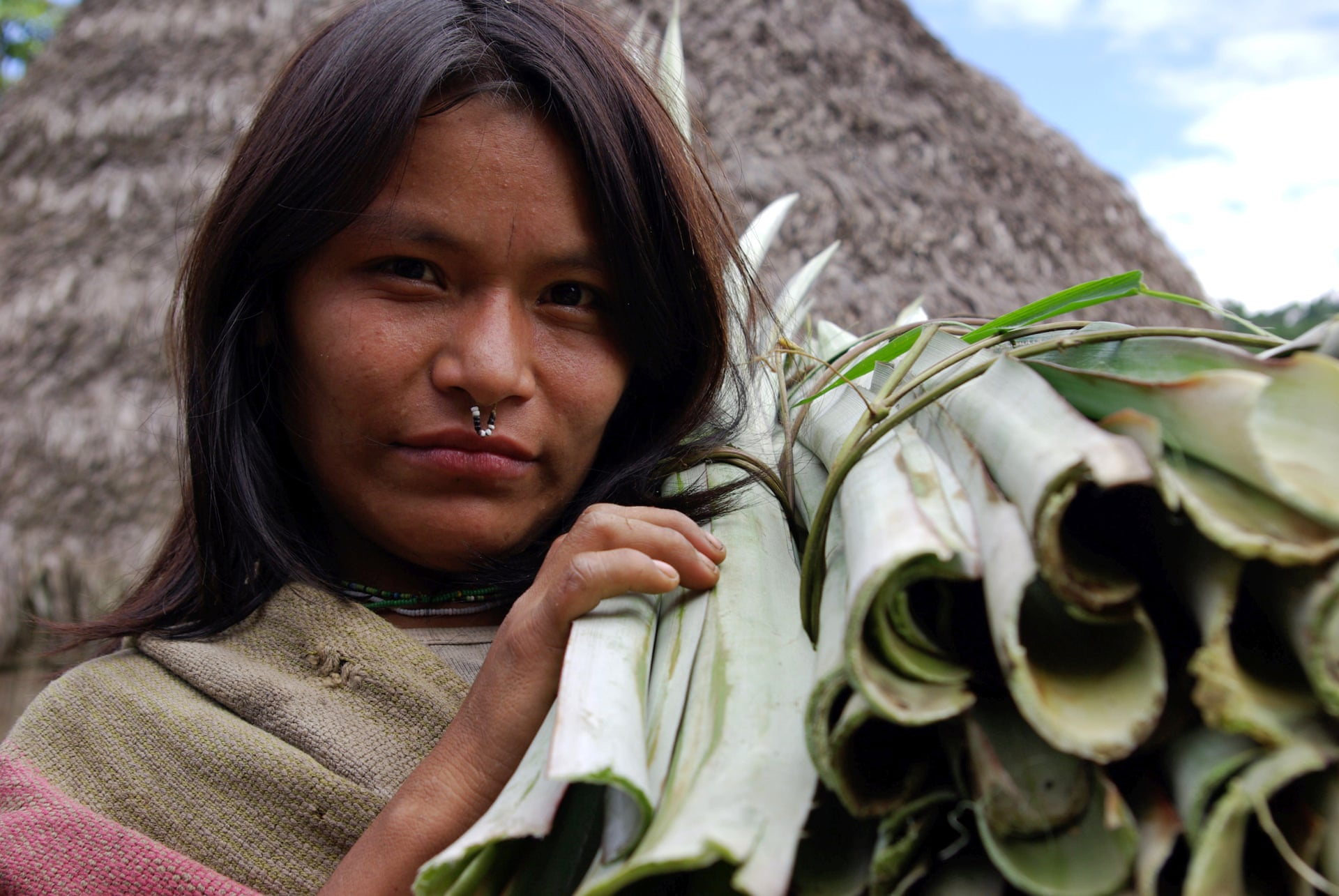 A Matsigenka woman from one of the indigenous communities in the Manu National Park in Peru. None of the communities have title to their land. Photograph: Glenn Shepard