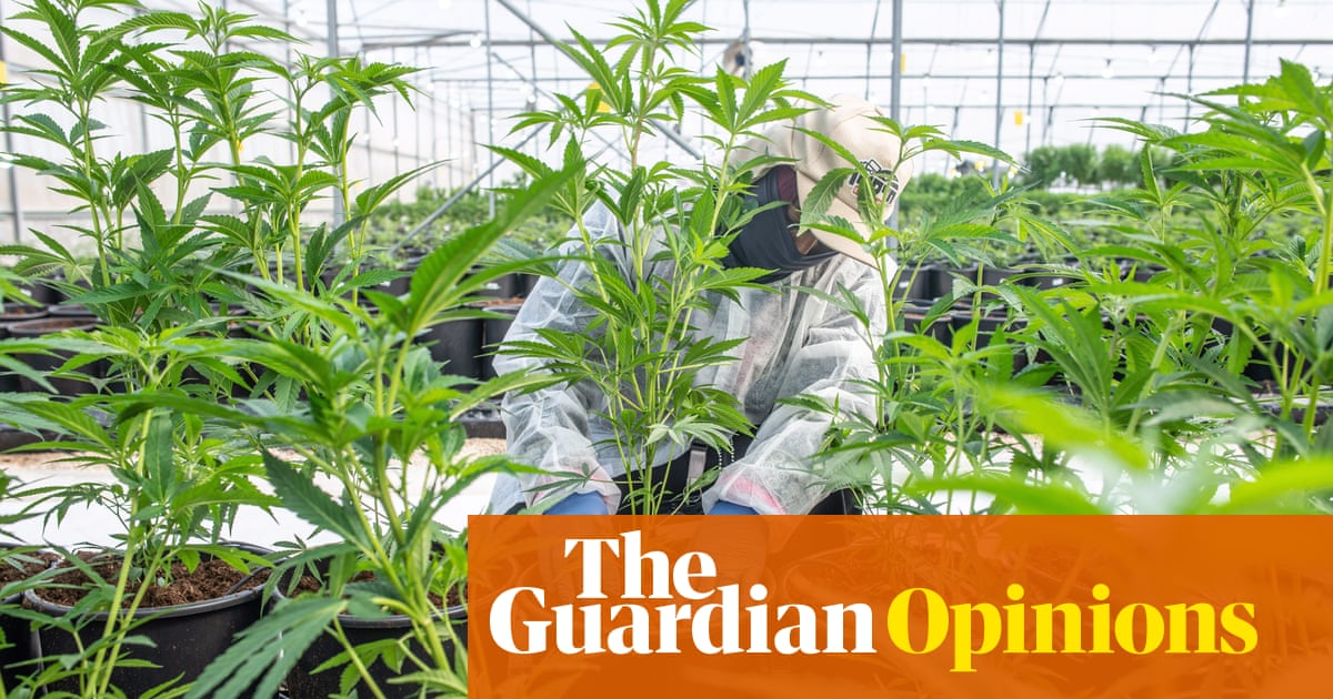 Legalisation of cannabis in the UK would help protect its users from