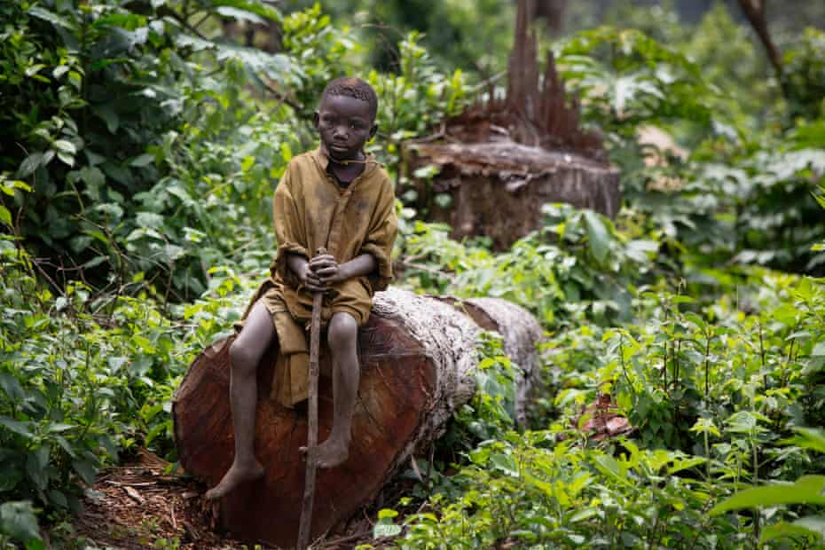 A child sits on a newly felled tree trunk on the edge of the park