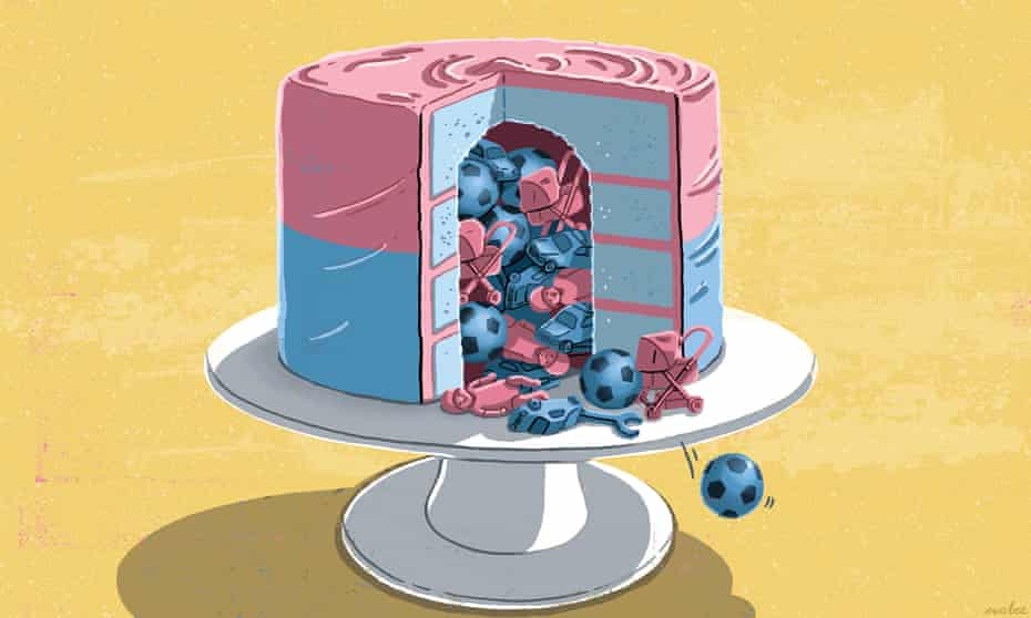 An illustration of a cake, half pink and half blue, with a slice out of it and pink and blue toys falling out of it