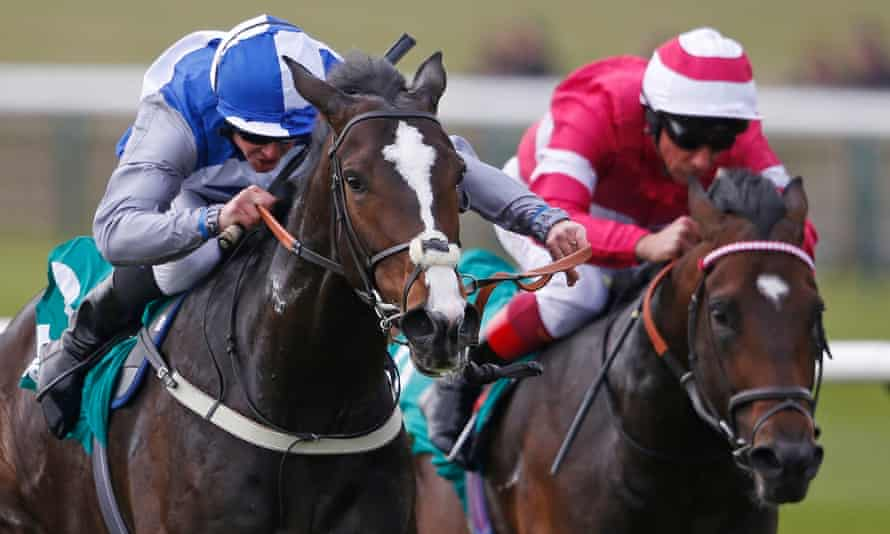 Frankel 2000 guineas betting davidowitz betting thoroughbreds