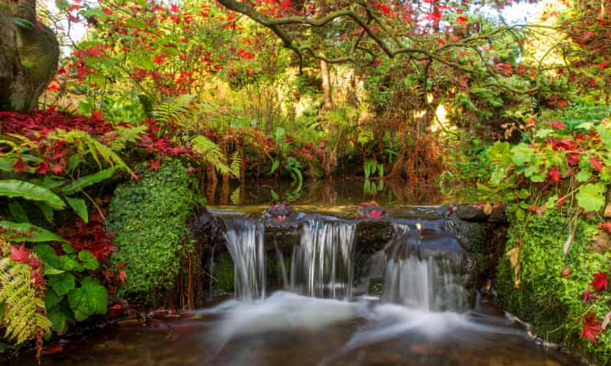 Autumn leaves frame a waterfall in the Japanese Garden at Newstead Abbey, Nottinghamshire