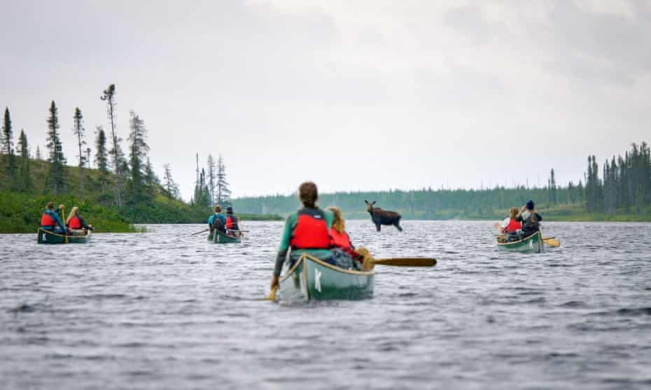 The young canoeists pause to enjoy an encounter with a moose.