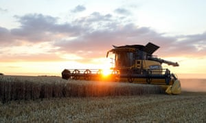 Intensive farming, which is one of the causes of the loss of habitat for the UK's wildlife, has to be addressed say the RSPB.