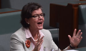 The member for Indi, Cathy McGowan, helped launch the Australia Institute report in Canberra on Wednesday.