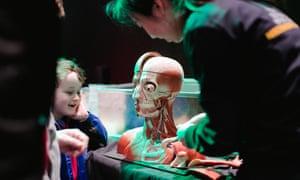 Human biology at NI Science Festival