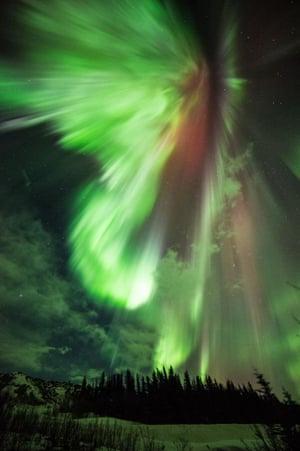 St. Patrick's aurora borealis, Donnelly Creek, Alaska